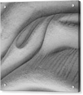 Unfolding And Enfolding -- V Acrylic Print