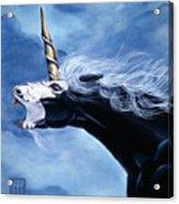 Unicorn Fury Acrylic Print