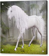 Unicorn In The Forest Acrylic Print