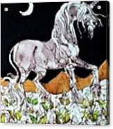 Unicorn Over Flower Field Acrylic Print