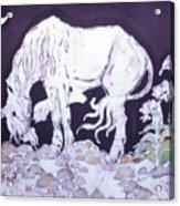 Unicorn Pauses Acrylic Print