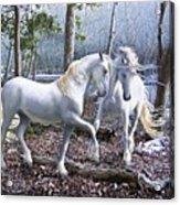 Unicorn Reunion Acrylic Print