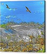 Uninhabited Beach  Acrylic Print