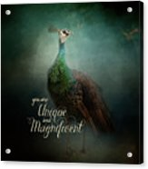 Unique And Magnificent - Peacock Art Acrylic Print