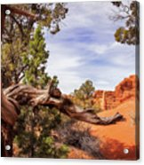 Unique Desert Beauty At Kodachrome Park In Utah Acrylic Print