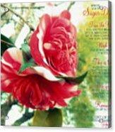 United W/ The Vine Sugar Daddy Acrylic Print