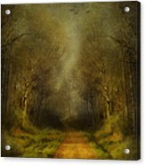 Unknown Footpath Acrylic Print by Svetlana Sewell