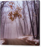Unknown Road Acrylic Print