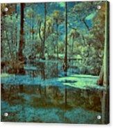Unseen Wetland Acrylic Print