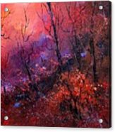Unset In The Wood Acrylic Print