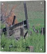Untended Fences Acrylic Print