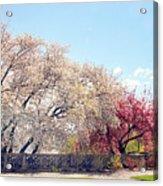 Untermyer Park Views Acrylic Print