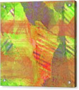 Untitled #13 Abstract Multicolor Acrylic Print