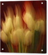 Up In Flames Acrylic Print by Donna Blackhall
