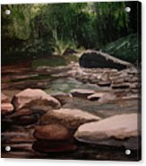Up Stream Acrylic Print