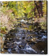 Up The River Gg  5671 Acrylic Print