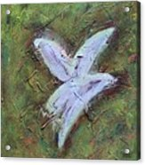 Upon Angels Wings Of Change Acrylic Print