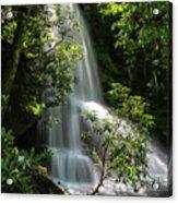 Upper Catawba Falls Acrylic Print