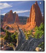 212645-upper Cathedral Valley  Acrylic Print