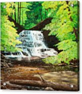 Upper Falls At Salt Springs Acrylic Print