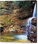 Upper Falls Holly River Acrylic Print