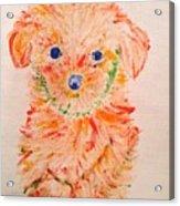Upright Puppy Acrylic Print