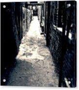 Urban Alley Acrylic Print