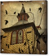 Urban Crows Acrylic Print