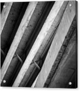 Urban Rib Cage - Number One Acrylic Print