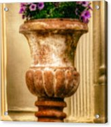 Urn With Purple Flowers Acrylic Print