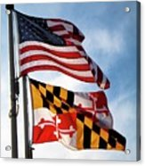 Us And Maryland Flags Acrylic Print