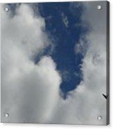 Us Navy Blue Angels Air Show Photo 1 Acrylic Print