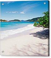 Us Virgin Islands, St. John, Cinnamon Acrylic Print
