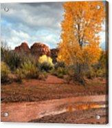 Utah Autumn Acrylic Print