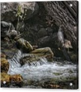 Utah Stream Acrylic Print
