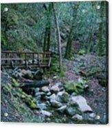 Uvas Canyon Bridge Acrylic Print