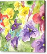Vail Flowers Acrylic Print