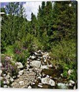 Vail Stream In The Summer 2 Acrylic Print