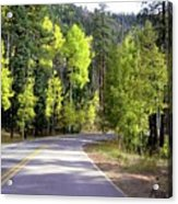 Vallecito Colorado Acrylic Print