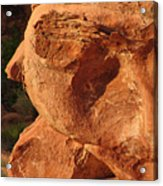 Valley Of Fire - Nevada's Crown Jewel Acrylic Print by Christine Till