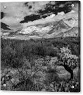 Valley View No.29 Acrylic Print