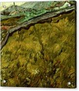 Van Gogh: Field, 1890 Acrylic Print