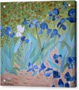 Van Gogh Iris By Alanna Acrylic Print by Alanna Hug-McAnnally