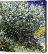 Van Gogh: Lilacs, 19th C Acrylic Print