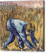 Van Gogh: The Reaper, 1889 Acrylic Print