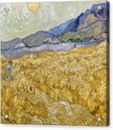Van Gogh: Wheatfield, 1889 Acrylic Print