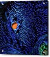 Van Gogh's Clam Acrylic Print