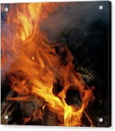Vanuatu's National Dish 'laplap' Cooking Over The Open Flames Of A Traditional Oven Acrylic Print
