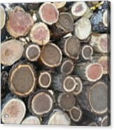 Various Firewood In The Round Acrylic Print