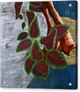 Vase And Denim Acrylic Print